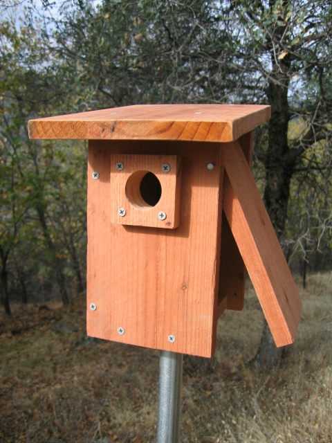 Birdhouse and nest box plans for several bird species for Types of birdhouses