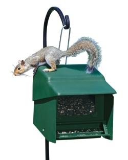 Super Stop-A-Squirrel