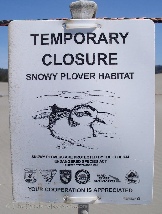 Snowy Plover Habitat Sign